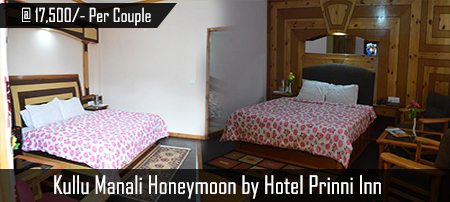 Manali Honeymoon By Prini Inn